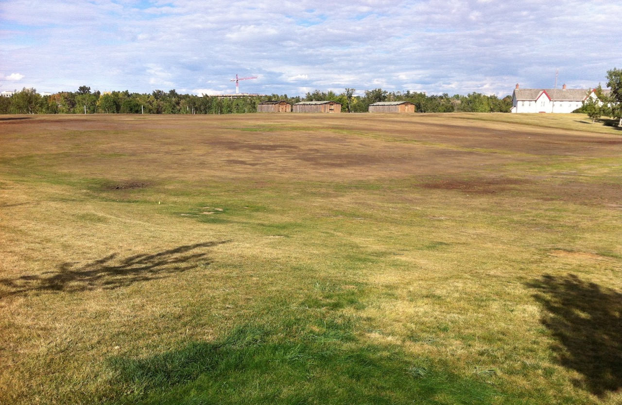 Wouldn't it be great if this open field at Fort Calgary became the home for an annual kite festival and perhaps an informal kite flying park when not in use for festivals.