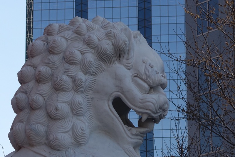 One of Chinatown's many lions, with office tower looming in the background. It looks angry!