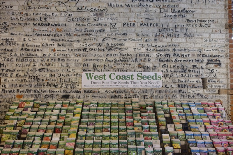 Found this wall of seeds in a quirky grocery/garden shop.