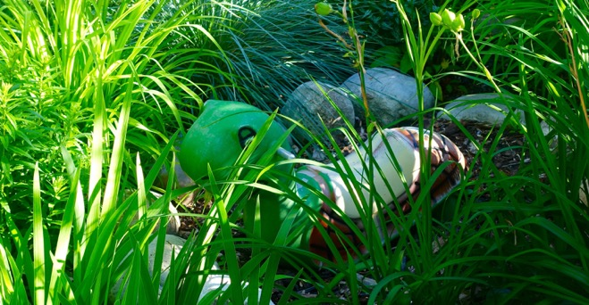 We also have Tommy The Turtle hidden in the front yard jungle.  There are two daycare kids who have found it and ask if they can sit on it, if I am in the yard.