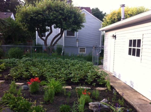 Another lovely backyard garden in an established Calgary community.