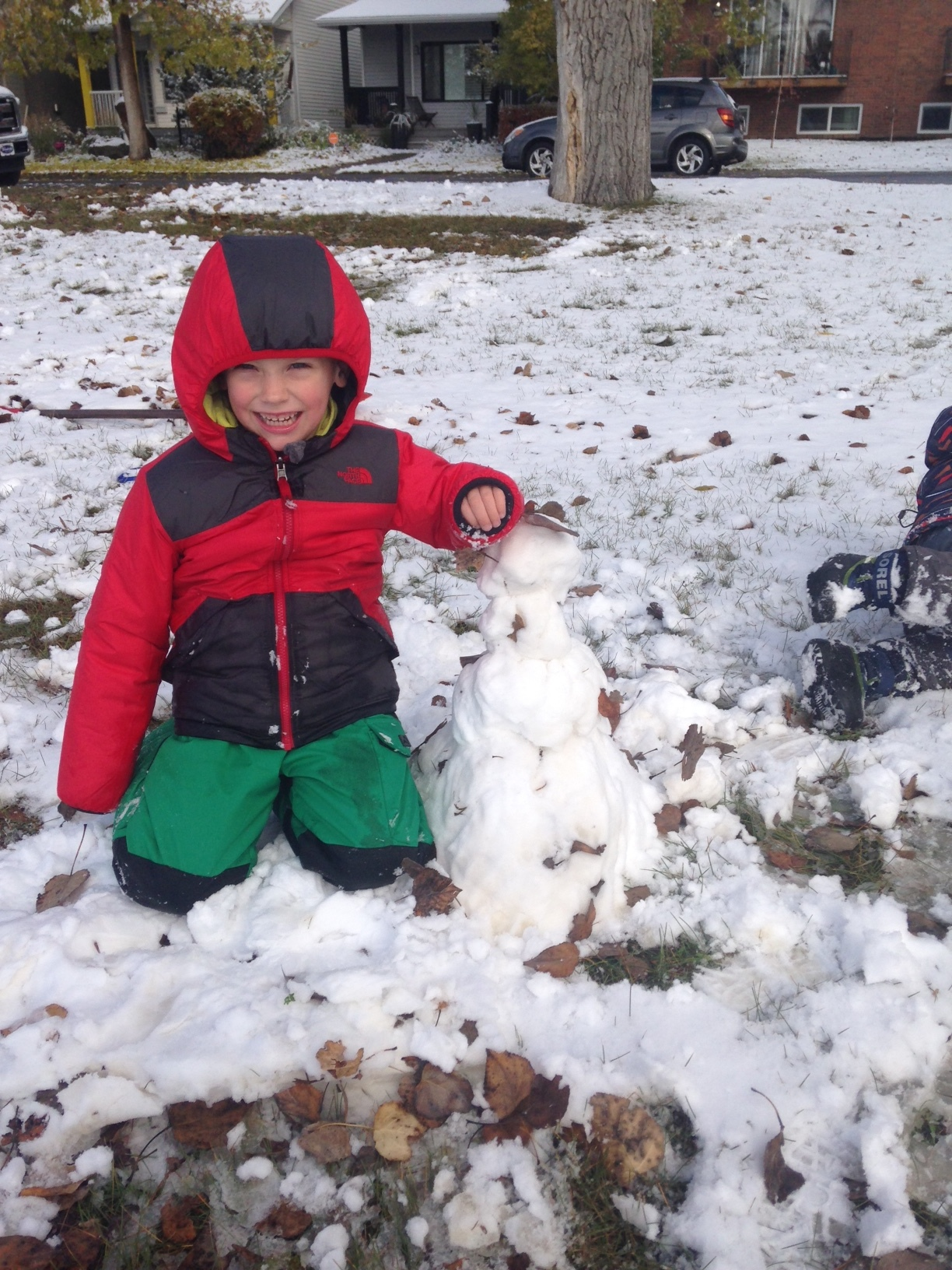 The kids decided they wanted to build a snowman on their own and this is the result.