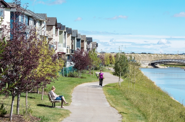 Nose Hill Creek creates a pastoral setting in the middle of the city.