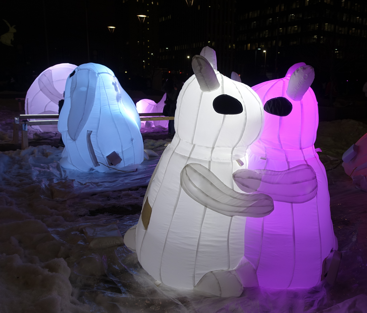 """Nibbles"" by Australia's Amanda Peer, is an installation of cuddly illuminated bunnies that appeals to the toddlers and anyone who is young at heart. Hotchkiss Gardens"