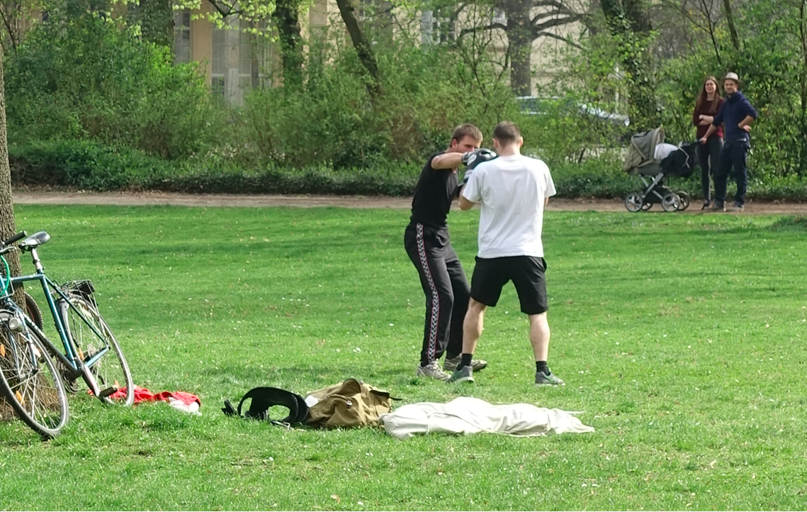 We weren't the only ones who had to stop and watch these two boxers working out in Friedenpark.