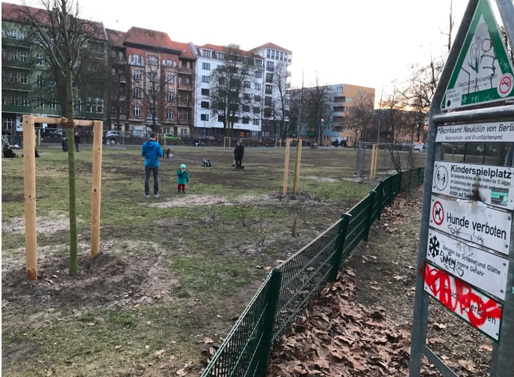 Berlin dog park.