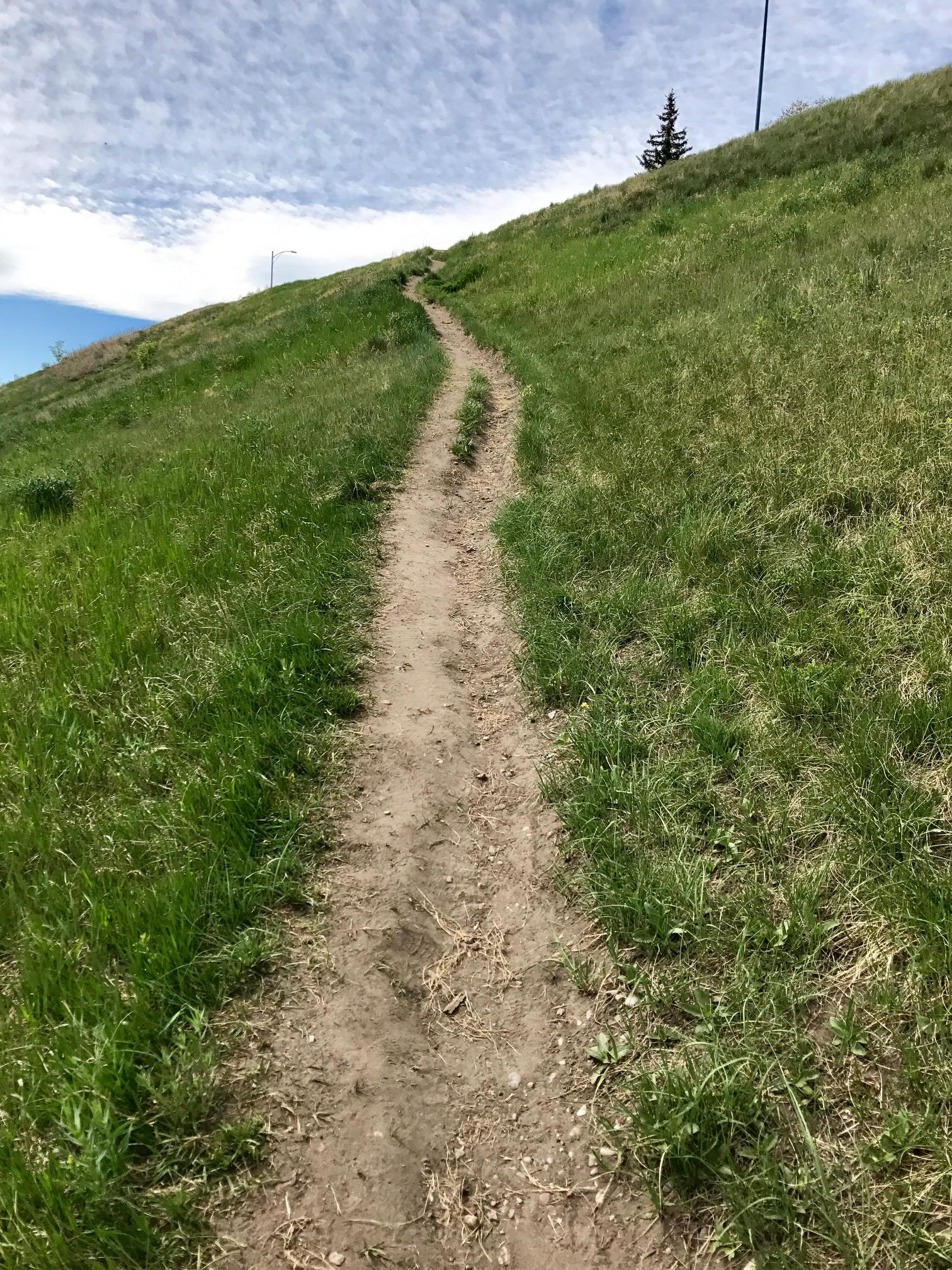 journey. path.