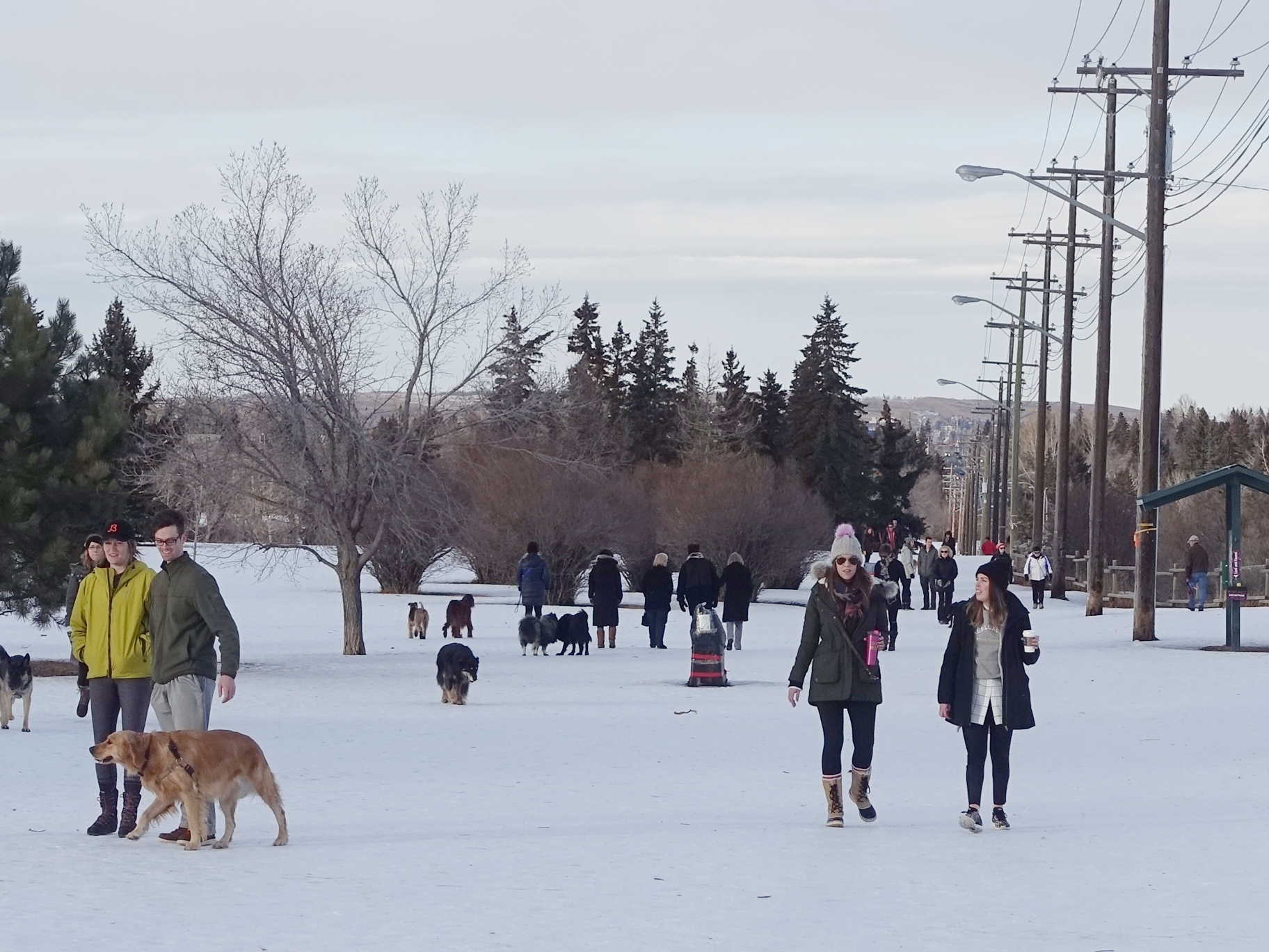 River Park on a winter day is busy with walkers of all shapes and sizes.