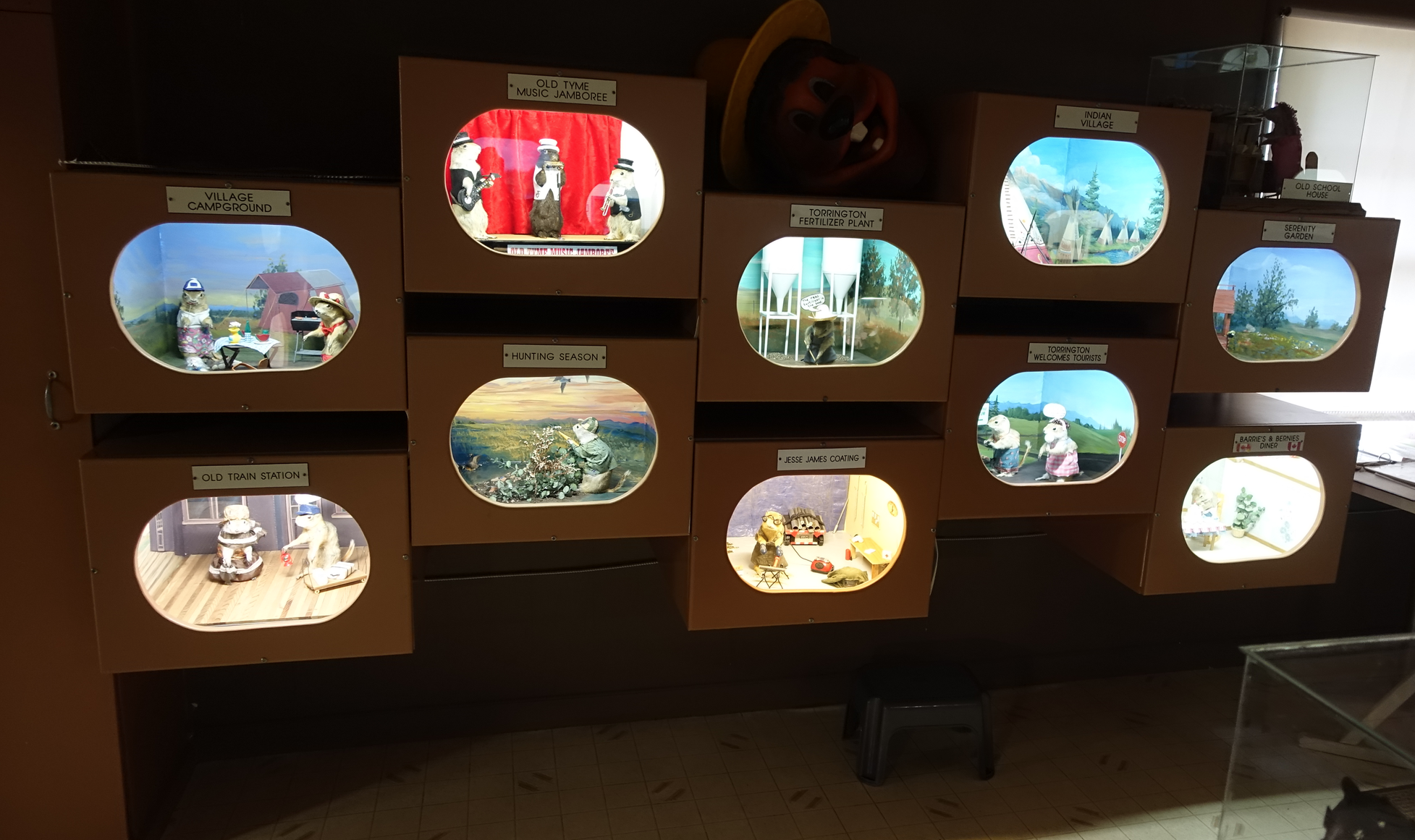 Just a few of the 47 dioramas at the Torrington Gopher Museum.