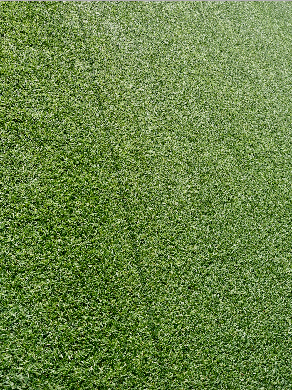 My biggest surprise was how the fairway grass looks and feels like artificial turf - so green and dense like nothing I have seen before. Perhaps that is because there are never any golf carts on the course, very limited play and heavy use of herbicides and pesticides.The rough is on the left side.