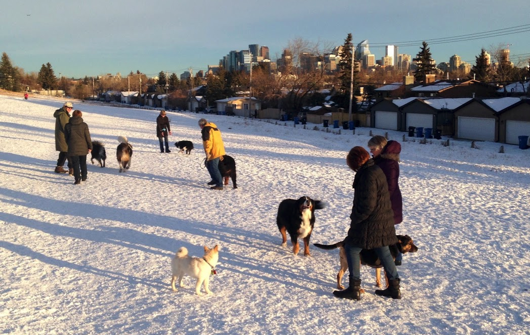 Our dog park is busy year-round. It offers great views of the downtown skyline.