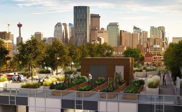 Bucci's Radius condo in Bridgeland will have a community garden on its rooftop. What a great way to meet your neighbours without leaving the building.