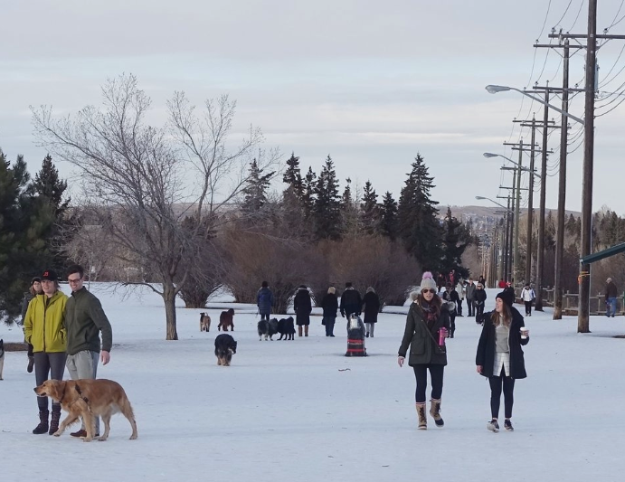 River Park is a popular dog park year-round .
