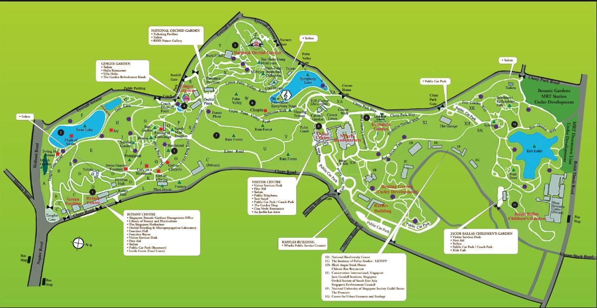 Singapore Botanical Gardens a 300-acre oasis.