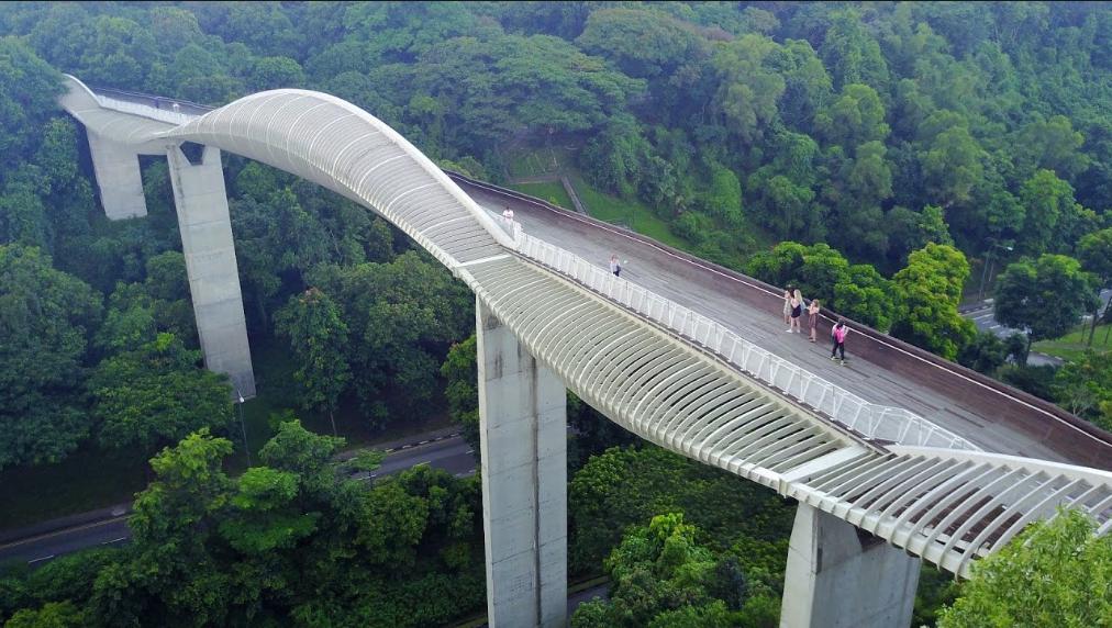 The Henderson Wave bridge is a unique experience.