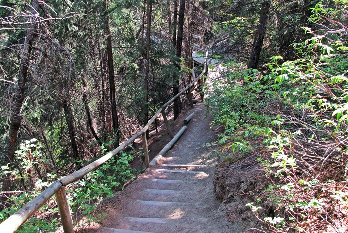 Douglas Fir Trail (photo credit: Hiking with Barry)