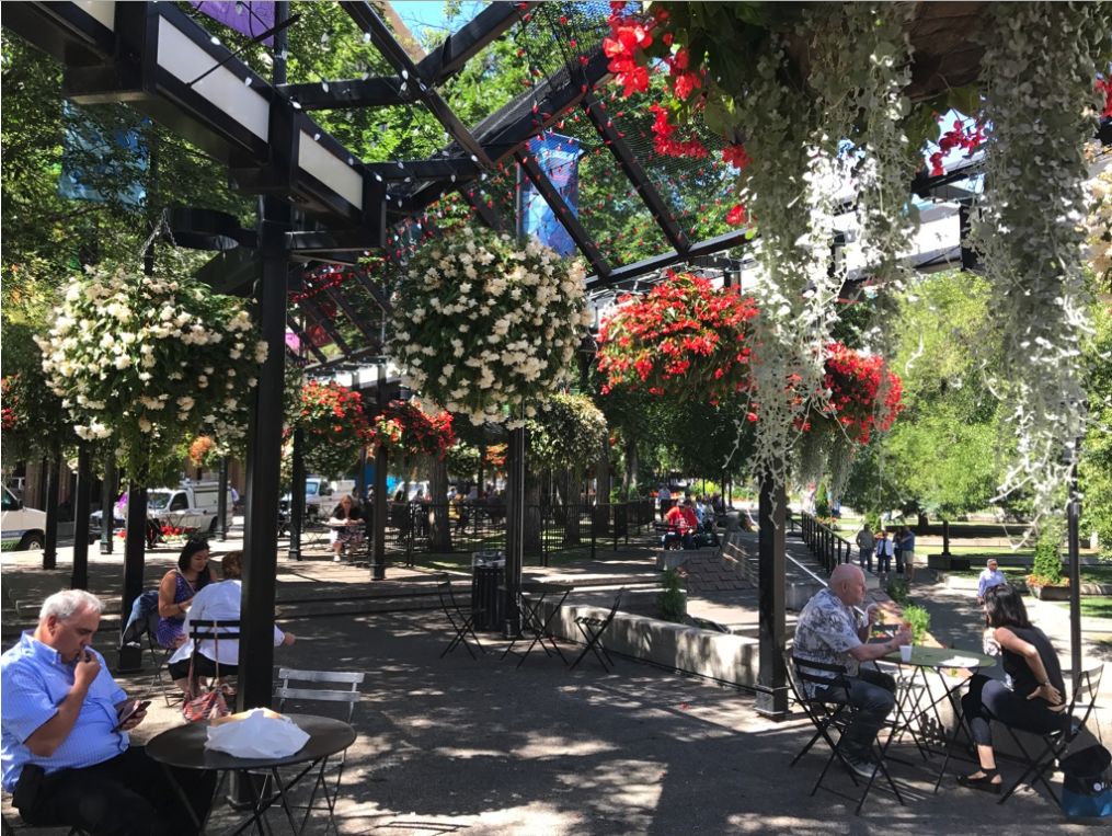 In the summer, Olympic Plaza becomes Olympic Gardens with beautiful hanging baskets, trees and other ornamentation.