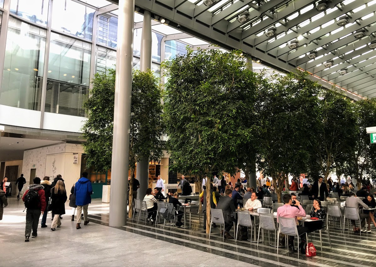 The +15 system is full of atriums that become an urban oasis in the winter. Brookfield Place Atrium.