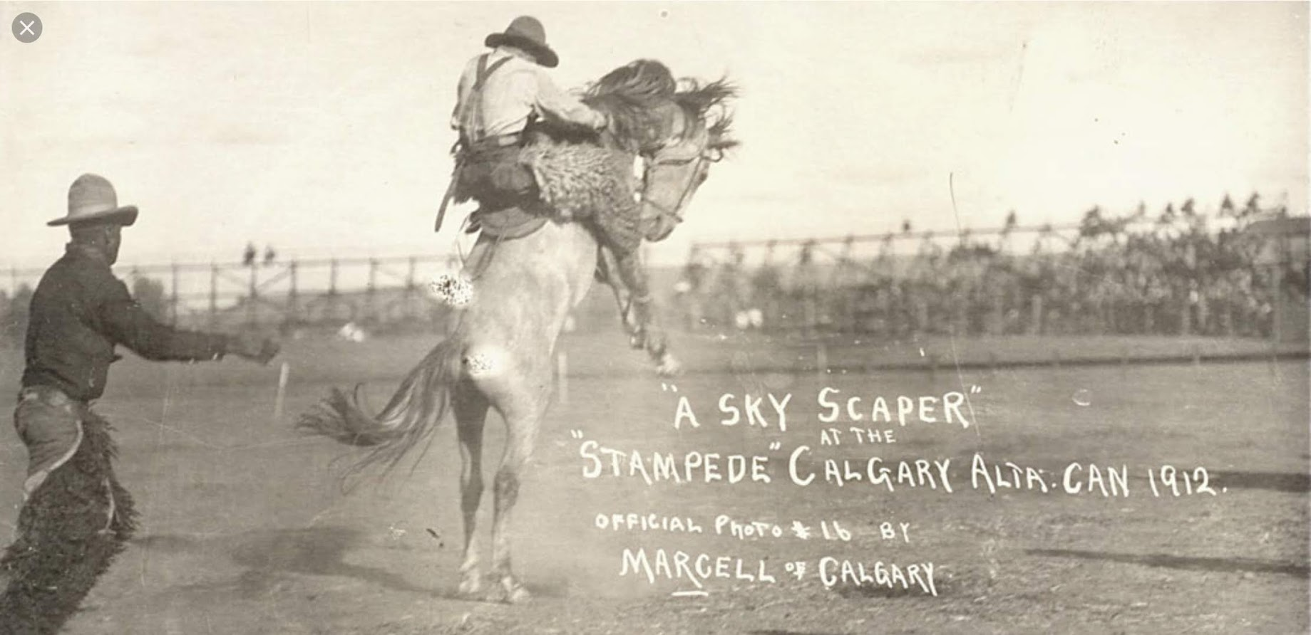 A Sky scaper foreshadows Calgary become a skyscraper city by the end of the 20th century?