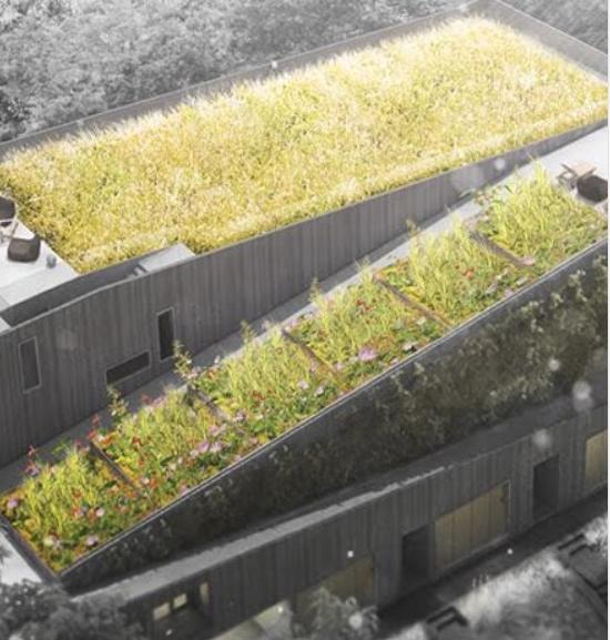 Conceptual rending of roof top gardens.