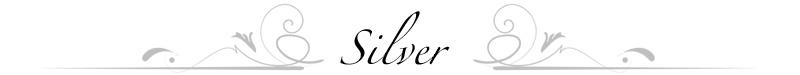 packageheaders-silver.jpg