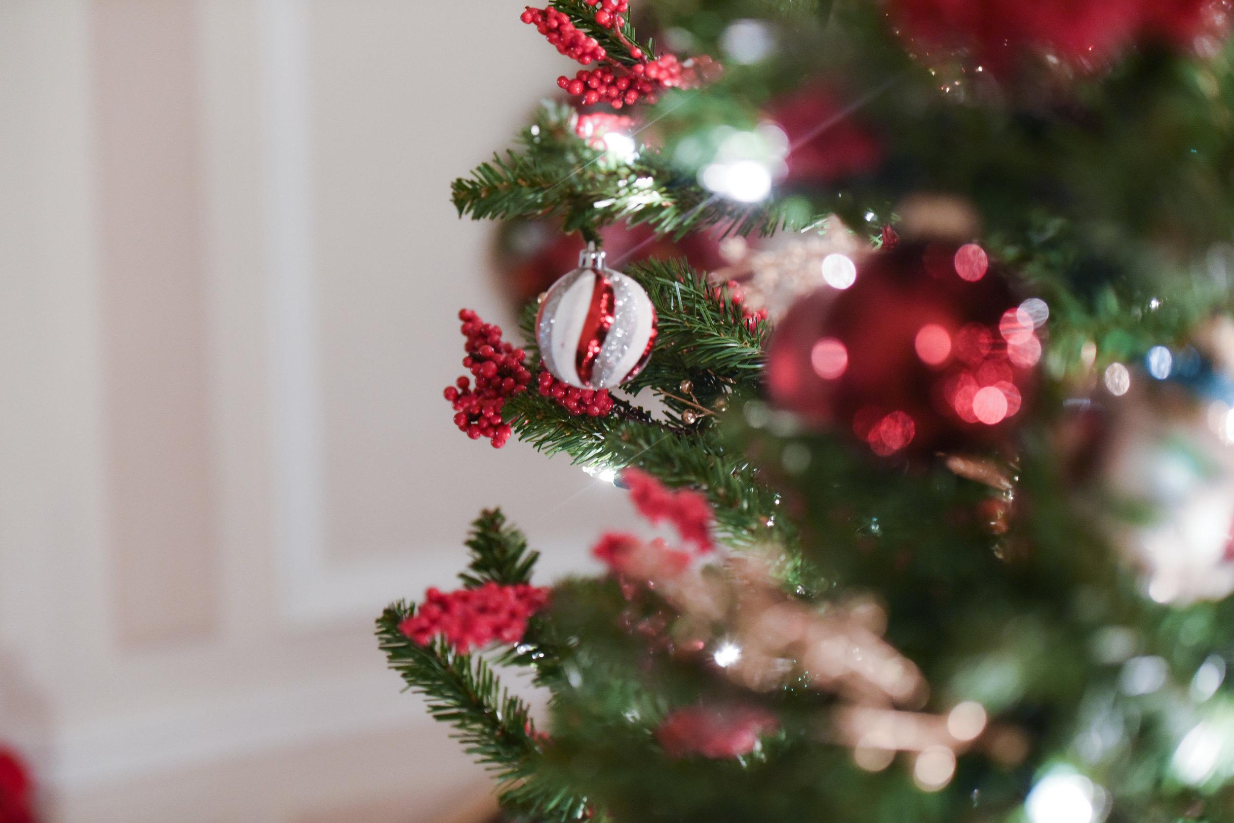 UNION CLUB CHRISTMAS TREE