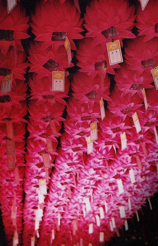 korea_lanterns.jpg