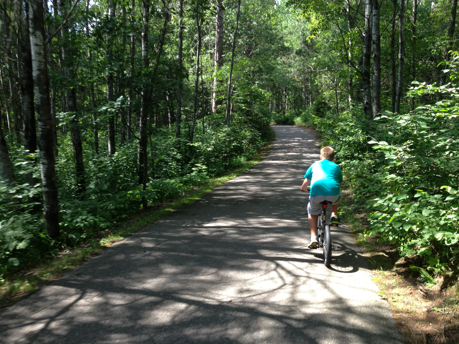 Bike trail within the state park