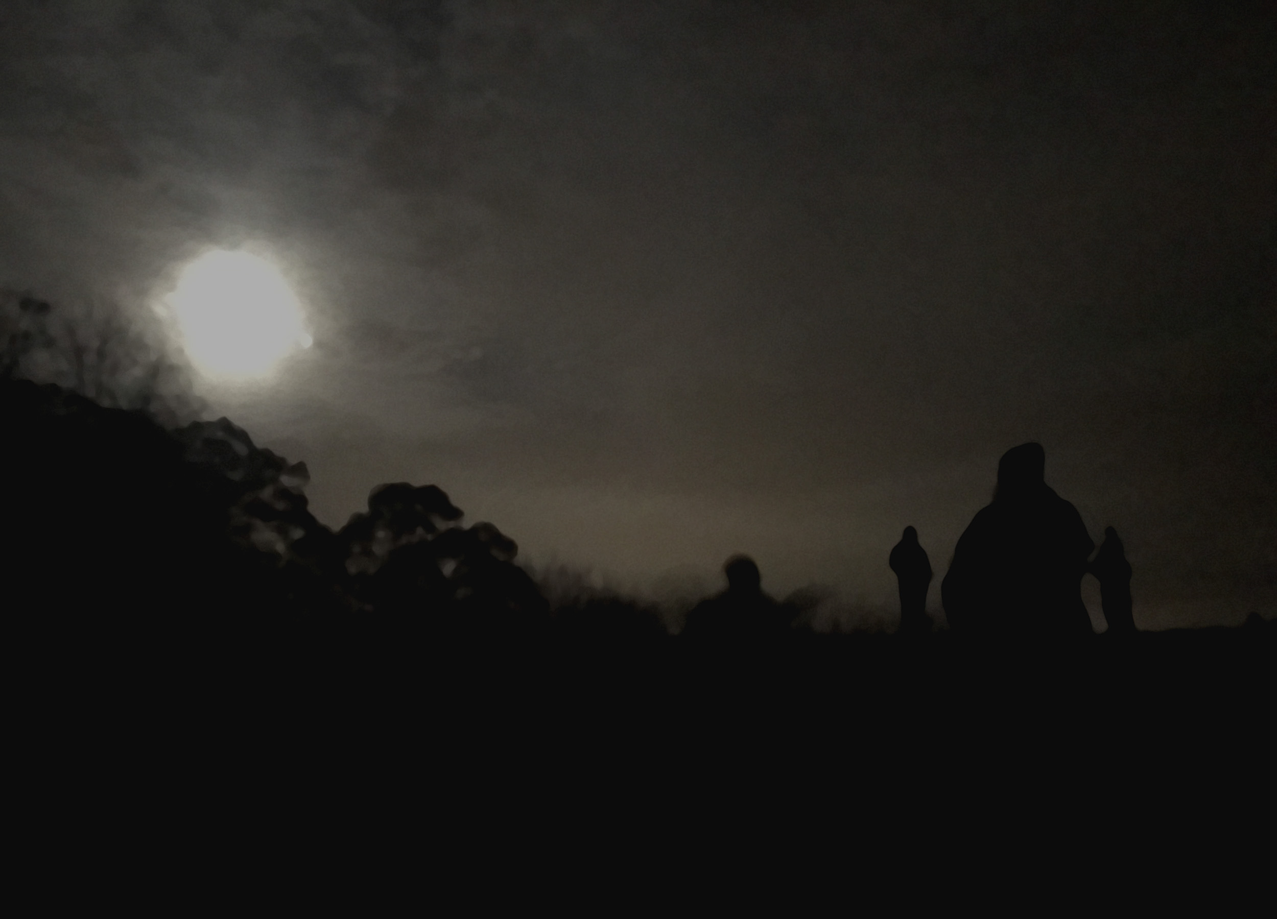 Full Moon Hike with family and friends in early November