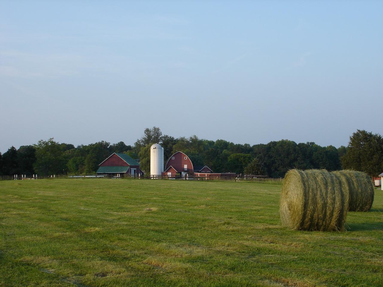 Hay Cutting Time