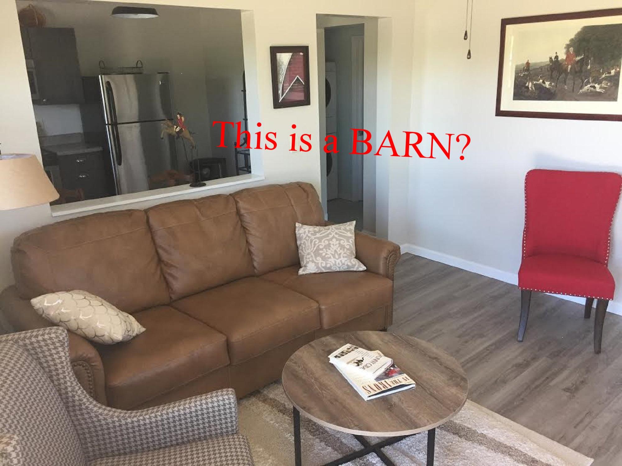 Living room 3 resized.jpg