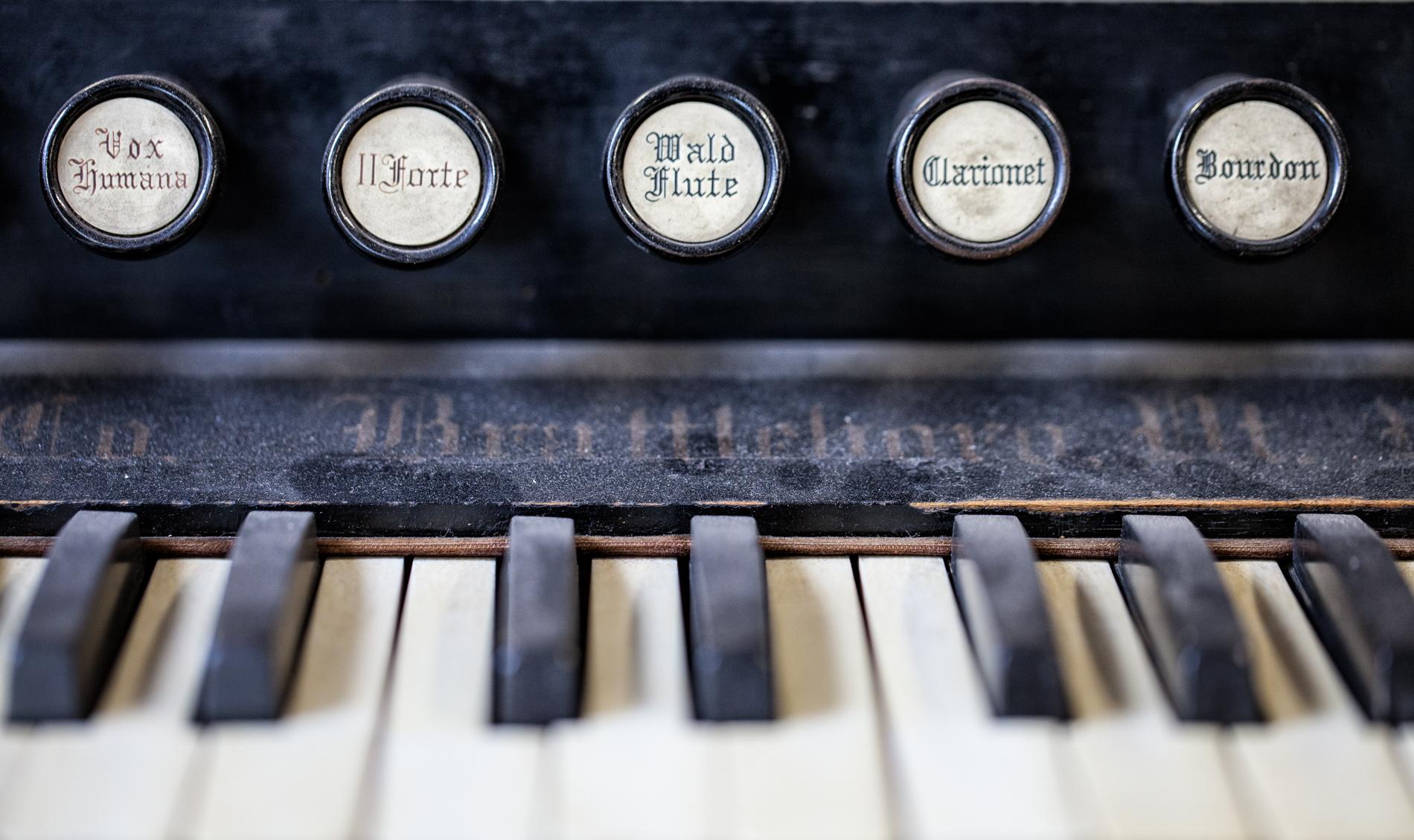 Reed Organ-11.jpg