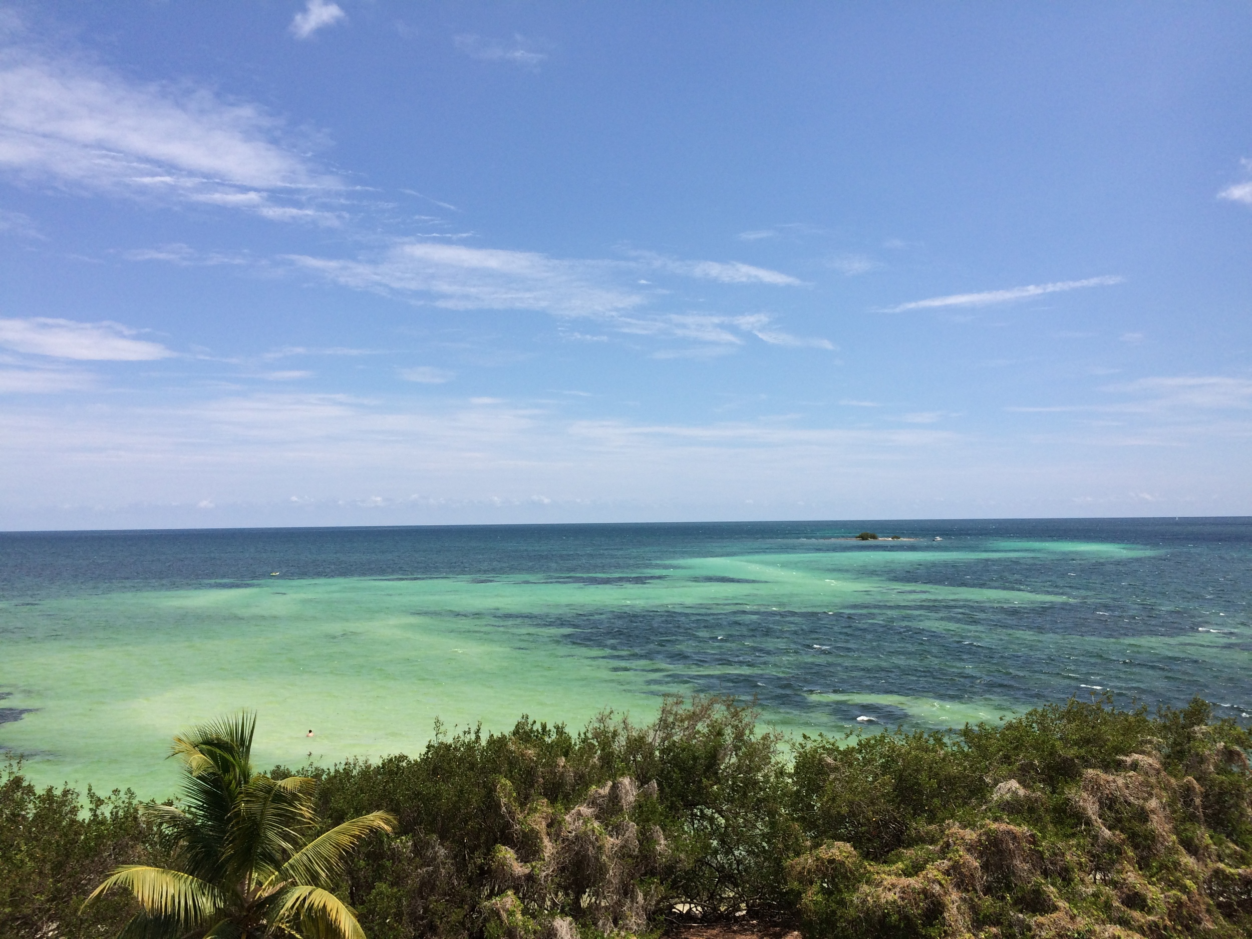 The view from Bahia Honda in the keys. There are reports of Common Mynas as far south as Key West.