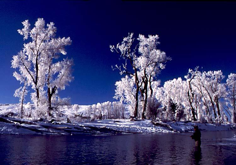 Fly fishing at Parshall, Colorado River