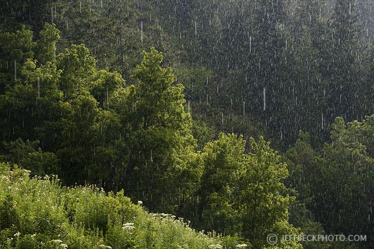 Sudden Downpour, City Creek Canyon, Utah