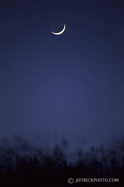 Fairy Tale Moon
