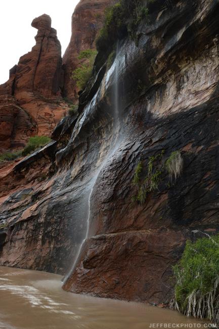 Spring waterfall, Coyote Gulch, Glen Canyon NRA, Utah