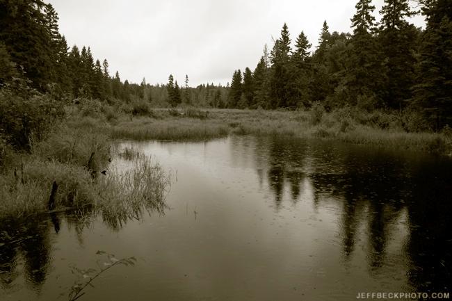Minong Beaver Pond