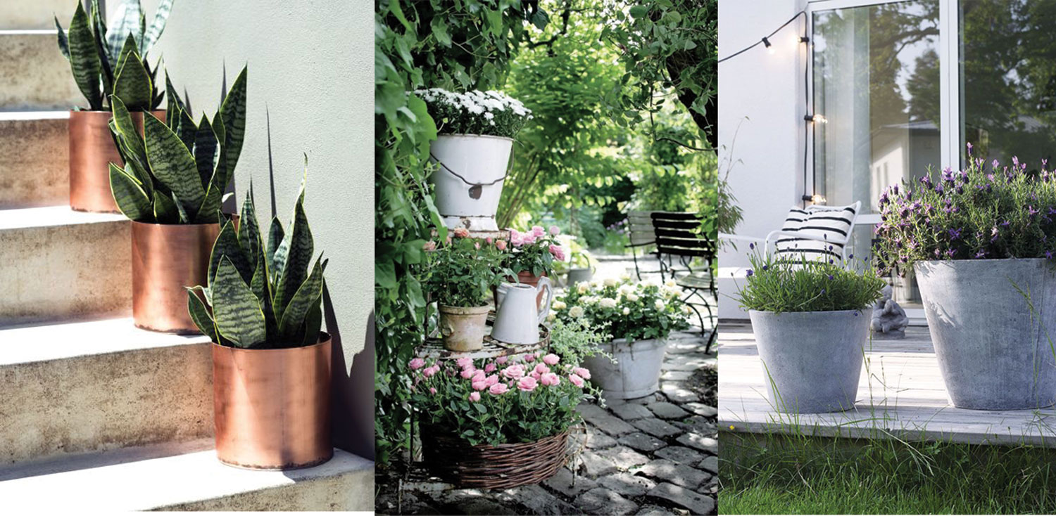 Lush copper pots, overflowing roses and zinc planters - all via Pinterest.