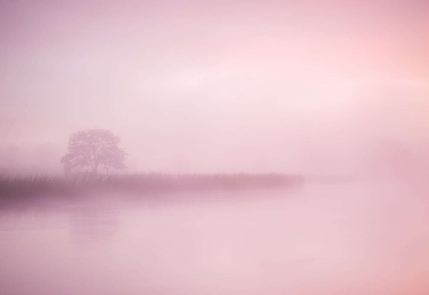 Summer mist - Co Meath