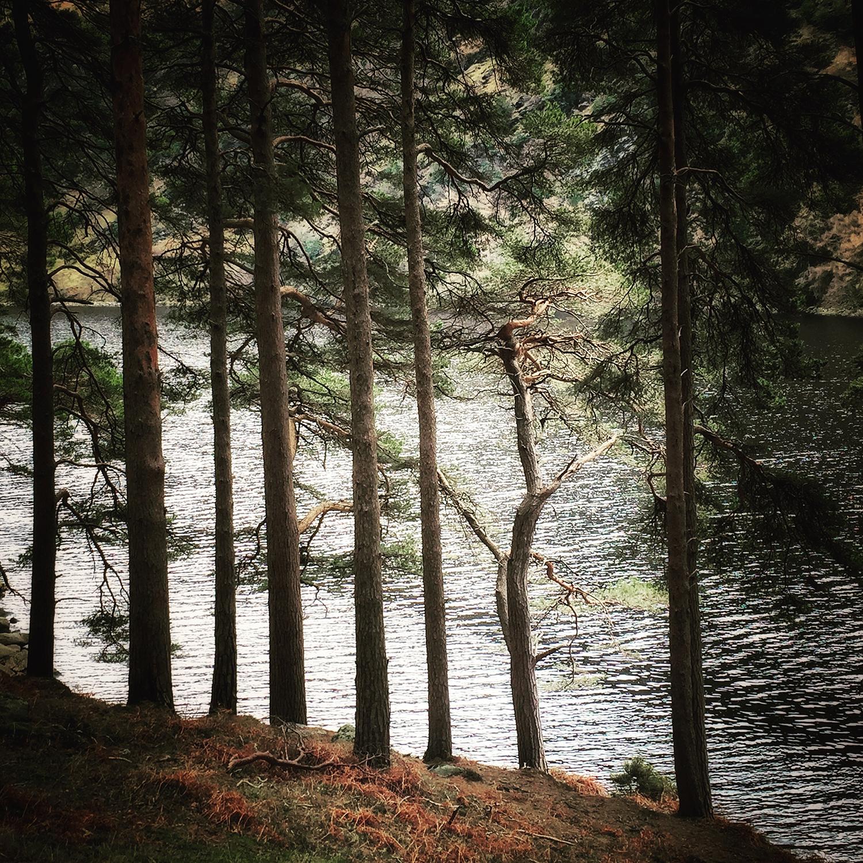 Upper Lake Glendalough