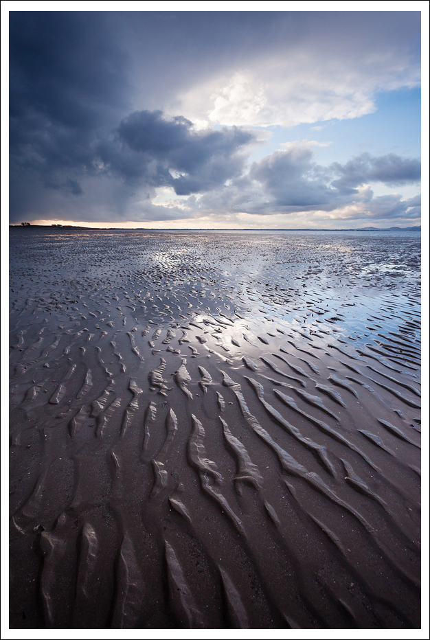 Evening Light, Co Louth