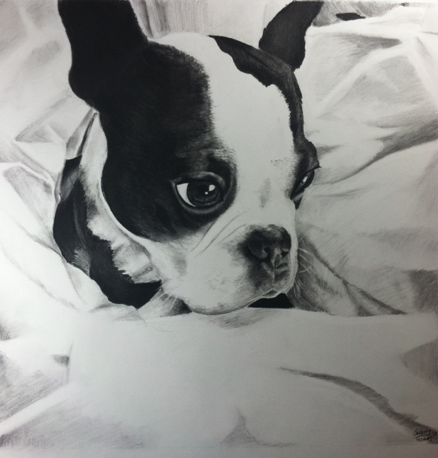 Charlie-18x18 Charcoal    Wedding Present for Jamie and Dave Fason     January 2013