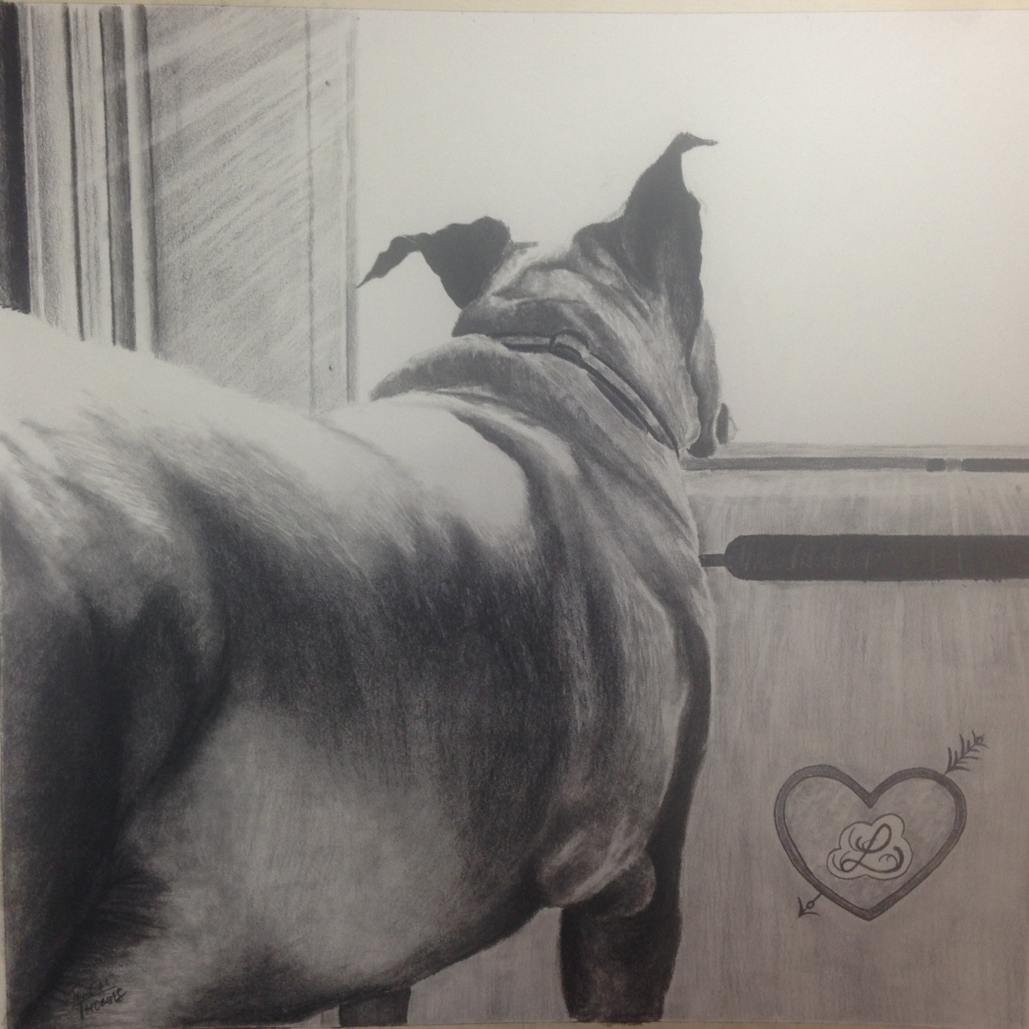 Lily-18x18 Charcoal  For Morgan Jones, Greensboro, NC