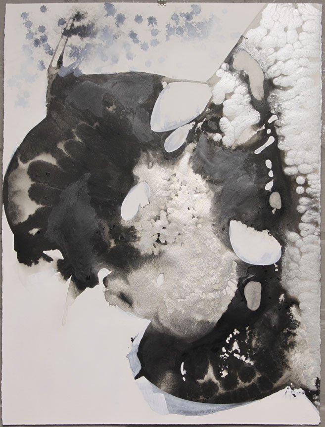 """Inside of the Out I  :: 22"""" x 30"""" :: ink, acrylic, powdered graphite :: 2015"""