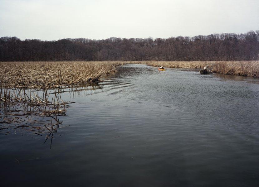 Ellison-Wetlands.jpg