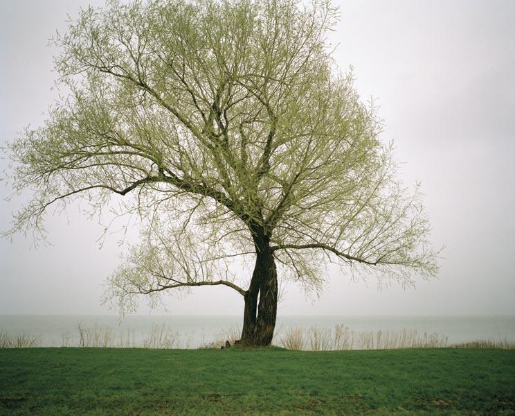 lake-ontario-green.jpg