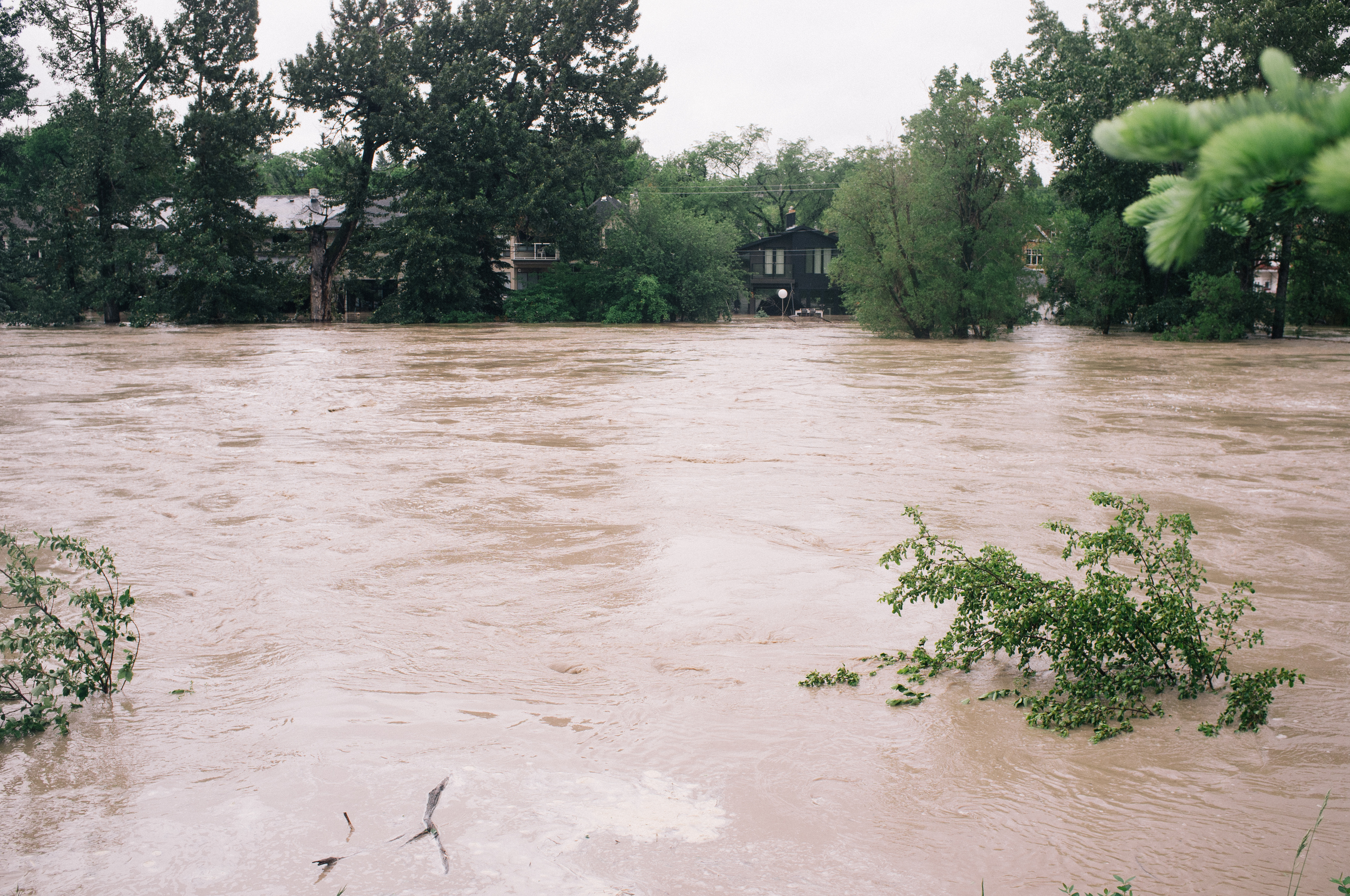 Some of the Riverdale homes I photographed yesterday are under water. Elbow River from Sifton Road.