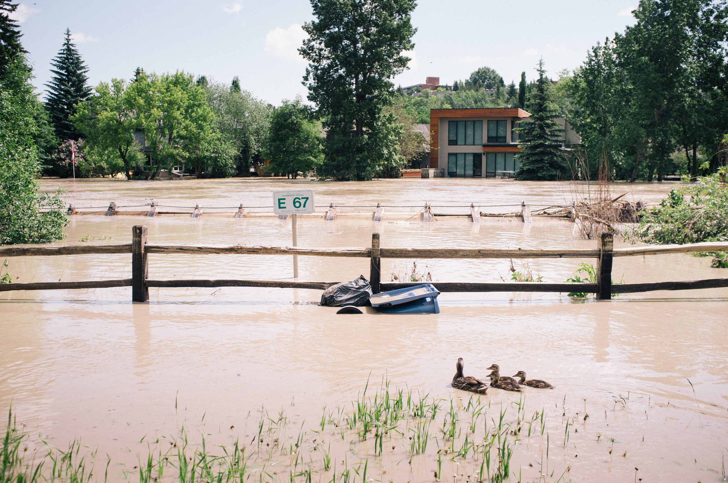 Flooded homes and the remains of the footbridge on the banks of the Elbow River.  (See: Thursday)