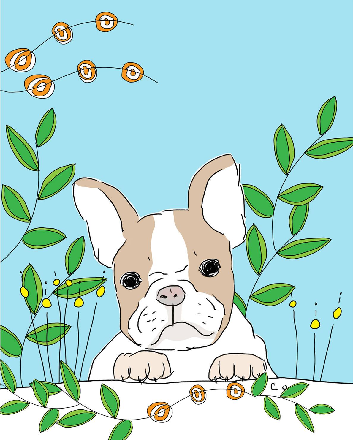 French Bulldog and Flowers illustration by Chris Olson
